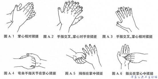 洗手步骤1简笔画